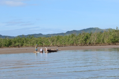 mangrove-fisheries