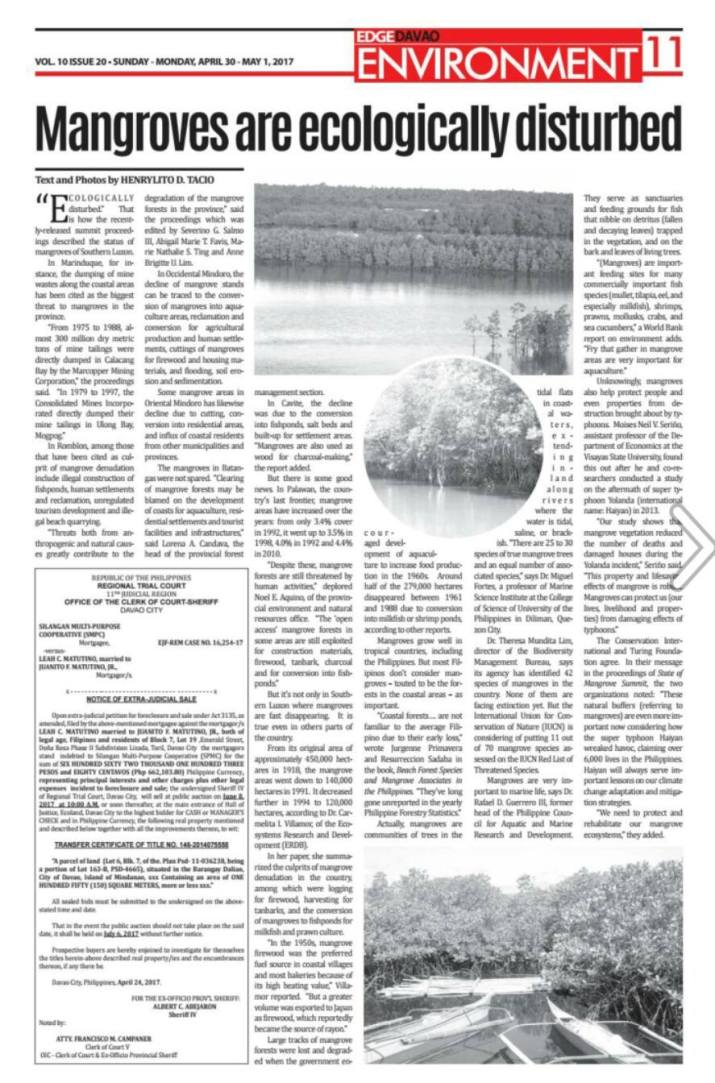 Mangroves are ecologically disturbed_Tacio 2017