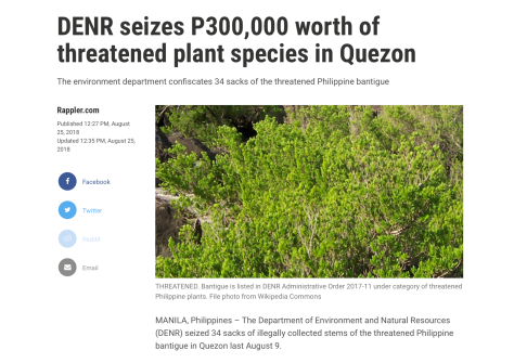 denr-seizes-threatened-plant-species-quezon